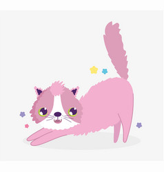pink funny cat domestic cartoon animal cats pets vector image
