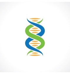 symbol of dna vector image