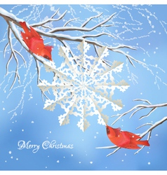 Christmas snowflake birds tree branch background vector image vector image