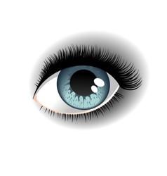 One eye vector image