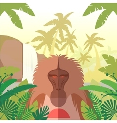 Baboon on the Jungle Background vector image