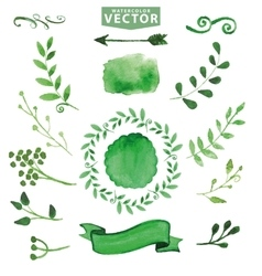 Watercolor green decorbranchesFloral set vector image