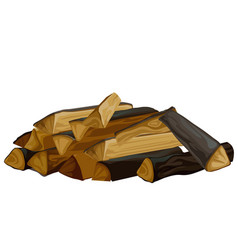 a pile dry firewood for stove isolated on vector image