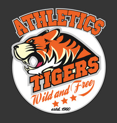 angry tiger sport team emblem vector image