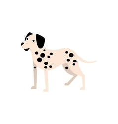 Dalmatian Dog Breed Primitive Cartoon vector image