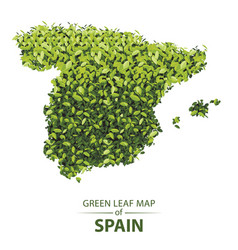 Green leaf map spain a forest vector