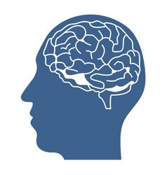 head with brain inside icon design vector image