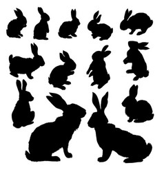rabbit set isolated on white background vector image