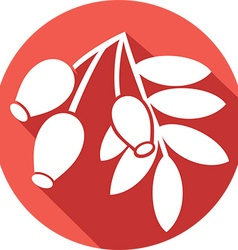 Red Rosehip Icon vector image