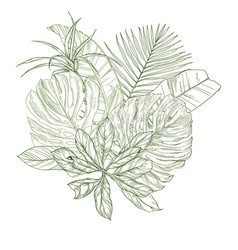 Sketch composition with tropical leaves vector