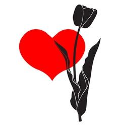 tulip heart vector image vector image