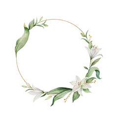 Watercolor wreath lily flowers and green vector