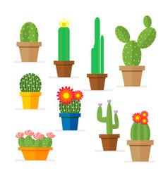 set of cactus in a pot domestic plant with vector image vector image