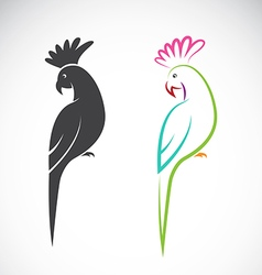 image of a parrot design vector image vector image