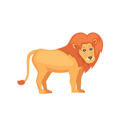 cute cartoon lion isolated on white vector image