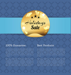 100 guarantee best products holidays sale poster vector image