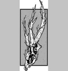 carcass vector image