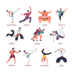 Fighting and martial sport arts people vector