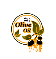 olives icon for olive oil vector image