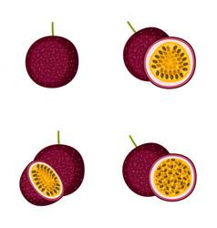 passion fruit whole fruit half vector image