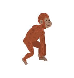 Ape monkey animal progress biology human vector
