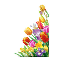 Arrangement with multicolor spring flowers vector