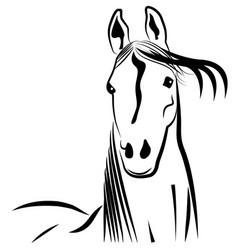 beautiful stallion horse logo vector image