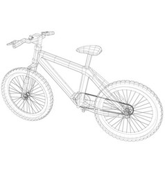 bicycle blueprint outline bicycle on white vector image