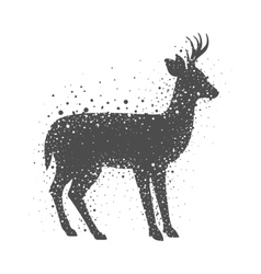 Isolated deer animal design vector