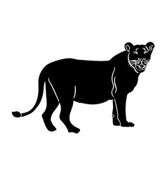 Isolated lion silhouette vector