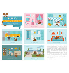 puppy care and safety in your home pet dog vector image