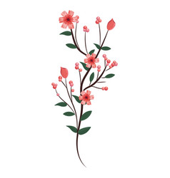 roses branches icon vector image
