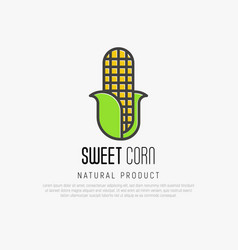 thin line icon corn for logo vector image