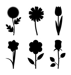 flowers black silhouettes vector image