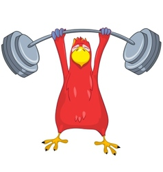 Funny Parrot Gym vector image