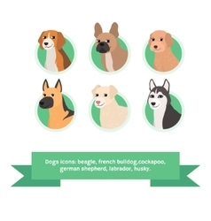 Dogs flat icons set with french bulldog cockapoo vector image vector image