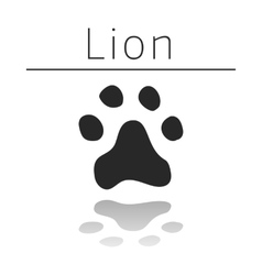 Lion animal track vector image vector image
