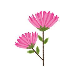 pink flower spring image sketch vector image vector image