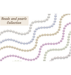 realistic beads of pearls set collection borders vector image