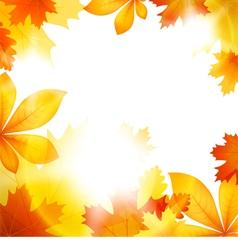 Autumn leaf fall vector image