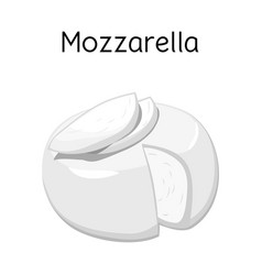 Design cheese and mozzarella symbol vector