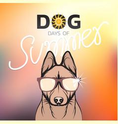 Dog days of summer logo icon design vector