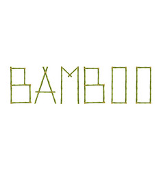 word bamboo made of realistic green sticks poles vector image
