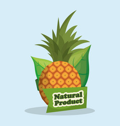 pineapple natural product market label vector image