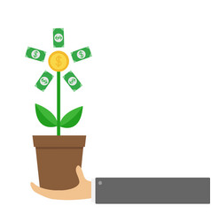 businessman hand holding growing paper money tree vector image