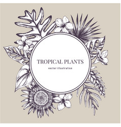 Round paper emblem over tropical plants hand vector