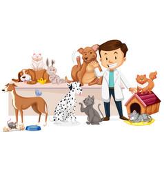Veterinarian with sick animal vector
