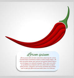 card with chilli pepper vector image vector image