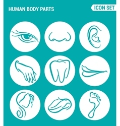set of round icons white Human body parts eyes vector image