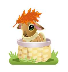cute brown bunny in a wicker basket with oak leaf vector image